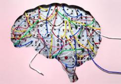 (Under 2012 publicerades det 477 forskningsartiklar om effekterna av mindfulness. Källa mindfulexperience.org)